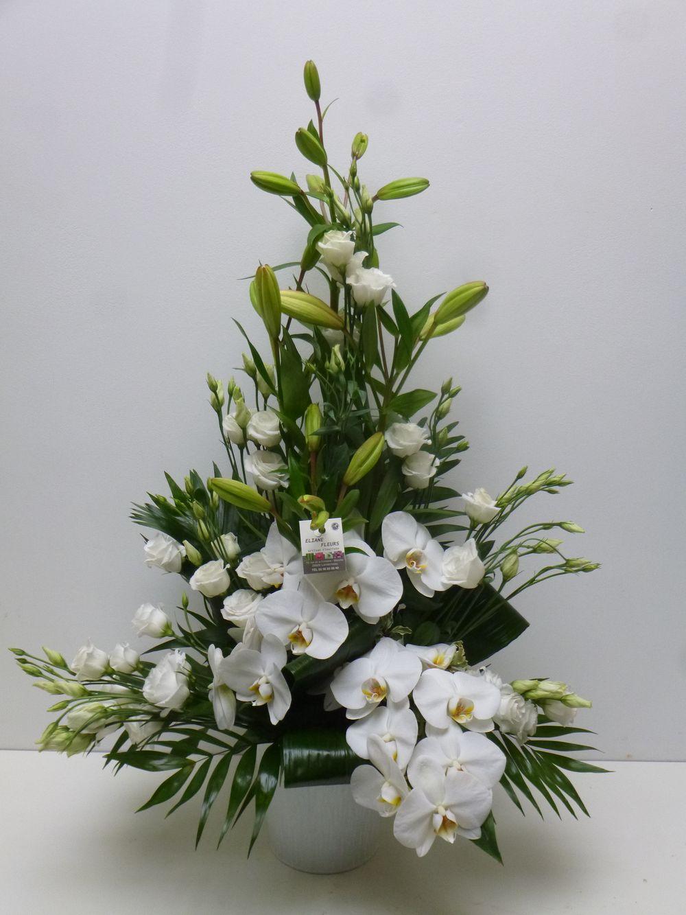 composition orchid e landerneau vers dirinon et ploudaniel. Black Bedroom Furniture Sets. Home Design Ideas