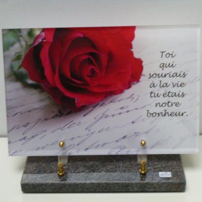 Plaque-altu-rose-rouge-400x400