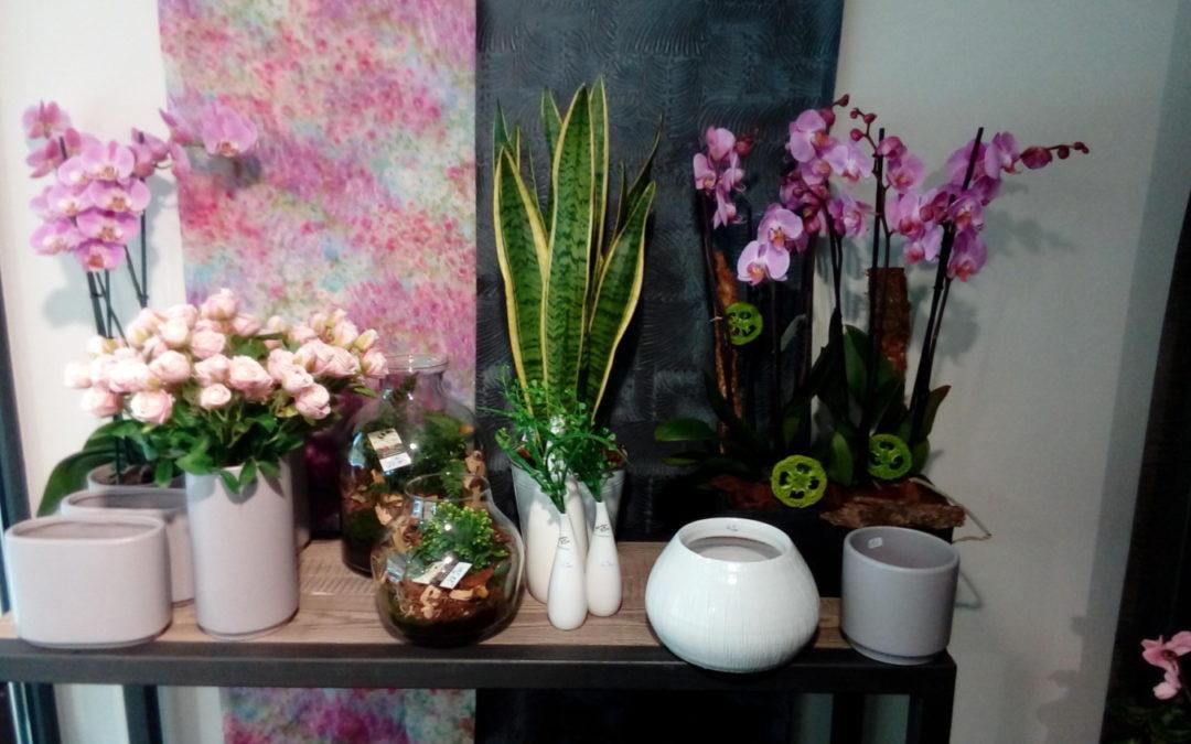 La boutique Eliane fleurs